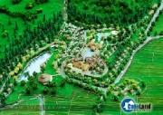 Zen Resort: Phong cách Nhật giữa núi rừng Ba Vì