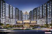 Tòa tháp căn hộ Diamond Brilliant quận Tân Phú