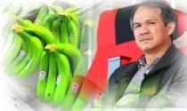Bầu Đức lấy thị trường Trung Quốc làm nền tảng để xuất khẩu trái cây