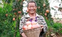Bán nông sản trên mạng, thu hàng tỷ USD mỗi tháng