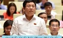Con đường ông Phạm Phú Quốc từ lãnh đạo DNNN thành đại biểu Quốc hội
