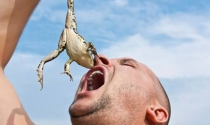 Bí quyết tăng hiệu suất lên gấp 3 của người thành công: Lên kế hoạch từ buổi tối và 'nuốt ngay con ếch xấu xí' vào buổi sáng