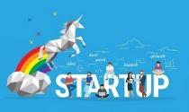 Founder các startup kỳ lân thường khởi nghiệp ở độ tuổi nào?