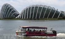 Số triệu phú của Singapore có thể tăng hơn 60% trong 5 năm tới