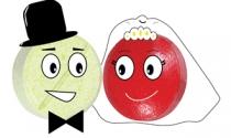 Cuộc hôn nhân ngoại của Domesco