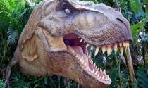Tỷ phú Australia nhân bản khủng long
