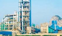 The Vissai mua lại Dự án Xi măng Đô Lương: Thương vụ mạo hiểm