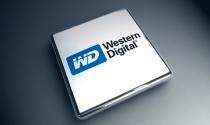 Western Digital đã chỉ định giám đốc điều hành mới