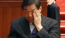 Bạc Hy Lai sẽ nhận án 20 năm tù giam?