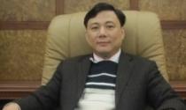 Hồ Sơ Doanh Nhân: Nguyễn Tuấn Hải