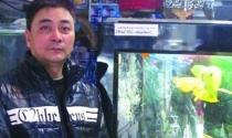 Dân chơi' Hải Phòng kể thú chơi cá rồng nghìn đô