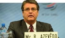 Thách thức của tân Tổng Giám đốc WTO