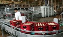 Chuyện sai phạm và chất lượng Bia Hà Nội