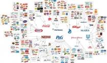 Những thương hiệu tiêu dùng kiểm soát thế giới