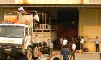 Náo loạn buổi cưỡng chế 3.600 tấn cà phê thế chấp 7 ngân hàng