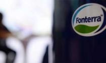 Tập đoàn sữa New Zealand dính bê bối nhiễm khuẩn