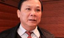 Ông Trần Văn Truyền trần tình về biệt thự, nhà gỗ và 'người em'