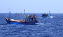 Trung Quốc đâm chìm tàu cá Việt Nam là hành động khủng bố