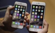 Cổ phiếu Apple mất giá sau lễ ra mắt iPhone 6
