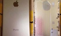 Nhân viên Foxconn bị bắt vì trộm nắp iPhone 6 mang đi bán