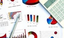 Quy định về báo cáo thống kê của doanh nghiệp FDI