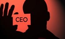 Truân chuyên CEO Việt Nam: Khi tôi phải đóng hai vai