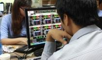 Giá trị tài sản ròng nhiều quỹ đầu tư giảm mạnh