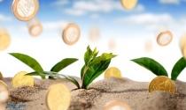 Ưu đãi đầu tư theo quy định mới có hiệu lực từ 01.07.2015