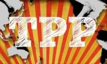 Hỏi đáp từ A đến Z về TPP