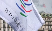 WTO: Đàm phán thương mại tự do toàn cầu khó đạt tiến triển