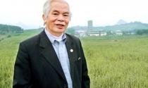 Trăn trở của Chủ tịch mía đường Lam Sơn