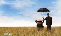 Quy định về bảo hiểm xã hội có hiệu lực ngày 01/12/2015