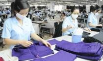 Vì sao doanh nghiệp Việt đang nhỏ dần?