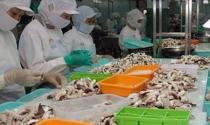 Lại thêm lô hàng thủy sản xuất khẩu bị EU cảnh báo