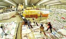 """Những quy định vô lý đang """"bào mòn"""" doanh nghiệp xuất khẩu gạo"""