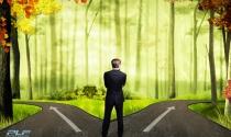 5 lý do nên thành lập văn phòng đại diện trước khi thành lập doanh nghiệp vốn nước ngoài