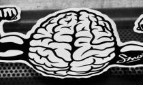 20 dấu hiệu của người có sức mạnh trí tuệ