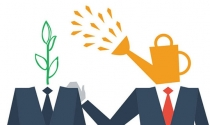 10 cách hữu hiệu giúp nhà khởi nghiệp tìm mentor