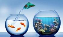 Bất kỳ ai từ nhân viên cấp thấp thành quản lý cấp cao đều có 4 yếu tố sau