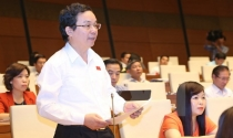 Đại biểu Quốc hội: Con số không quan trọng bằng chất lượng tăng trưởng