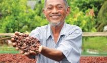 Ông Bùi Durassamy, sáng lập Kimmy's Chocolate: Giấc mơ người Việt ăn sô-cô-la Việt