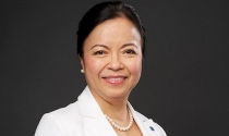 Chủ tịch REE: Việt Nam mới ở 'cách mạng 2.0'