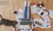 Nghiên cứu của đại học Harvard: Làm việc ở nhà năng suất và hạnh phúc hơn!