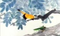 Chuyện bọ ngựa bắt ve sầu, chim sẻ rình sau lưng và bài học ý nghĩa: Trong cuộc sống làm gì cũng phải lường trước hậu quả!