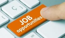 Những ngành nghề có nhu cầu tuyển dụng cao nhất 2018