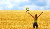 Thay thói quen, đổi cuộc đời: Quy tắc 20 giây đơn giản giúp bạn loại bỏ nhanh mọi tật xấu của mình