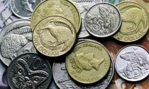 (Chọn sách cho nhà đầu tư) Làm thế nào để nhà đầu tư có thể tạo ra một Đô la từ 50 xu?