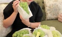 Giấc mơ mở sàn giao dịch trái cây quốc tế của bà mẹ 9x
