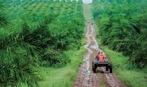 Những rào cản khi doanh nghiệp Việt đầu tư ra nước ngoài