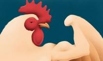 Việc người giàu thích gà quá to gây hại thế nào đến thế giới?
